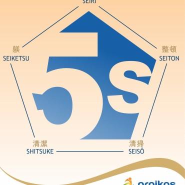 Caratula 5Ss